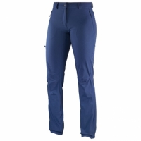 WAYFARER INCLINE PANT W